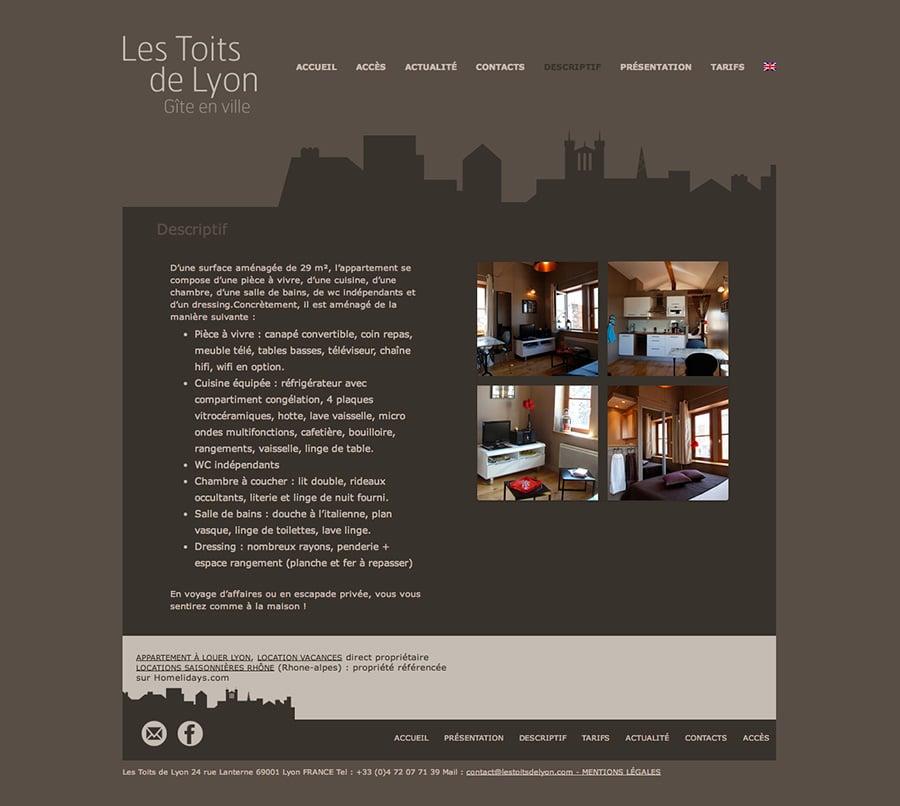 Les toits de Lyon-1